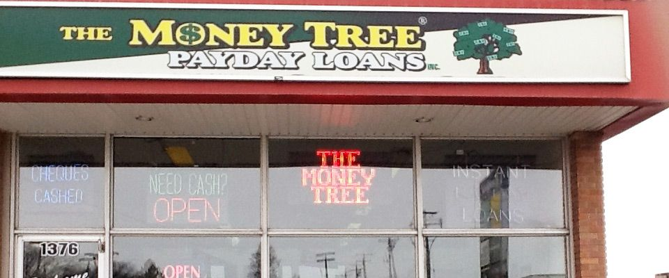 Money Tree storefront